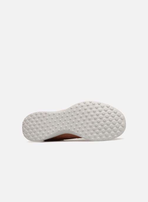 Sneakers Skechers MicroburstDearest Brun bild från ovan