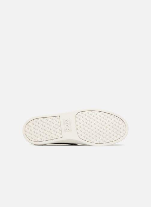 Sneaker Skechers Bobs B-Loved schwarz ansicht von oben