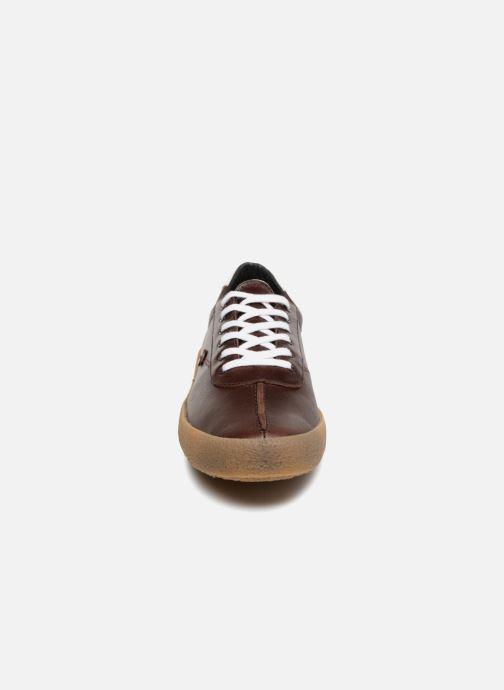 Sneakers Faguo Albizia03 Brun bild av skorna på