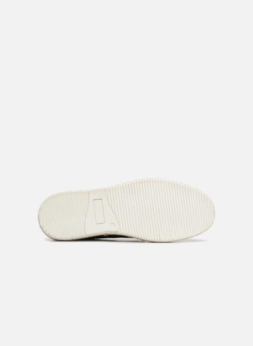 Chaussures à lacets Kickers Cordou M Bleu vue haut