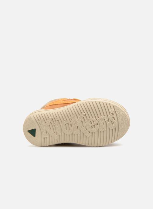 Sneakers Kickers Jargon BB Marrone immagine dall'alto
