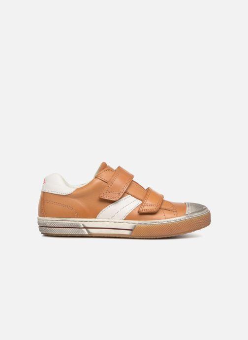 Sneaker P-L-D-M By Palladium Redon K braun ansicht von hinten