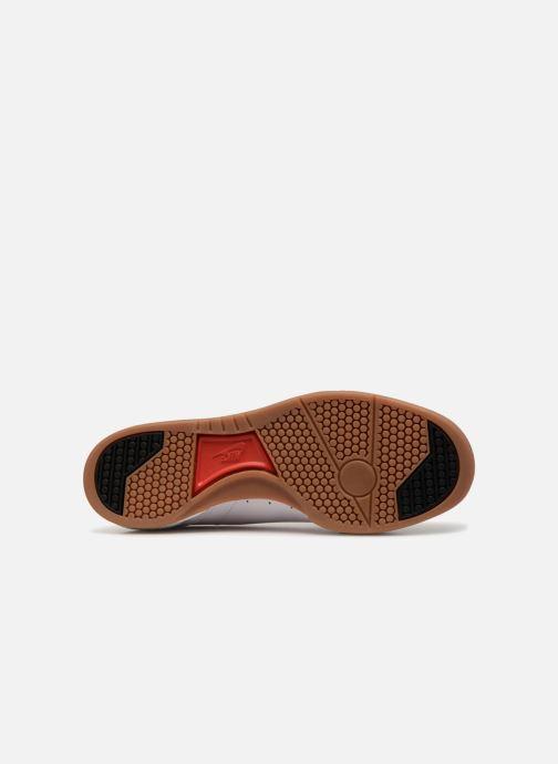 Sneaker Nike Grandstand Ii Premium weiß ansicht von oben