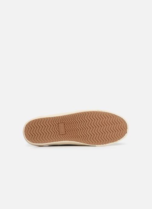 Zapatos con cordones TOMS Dorado Azul vista de arriba