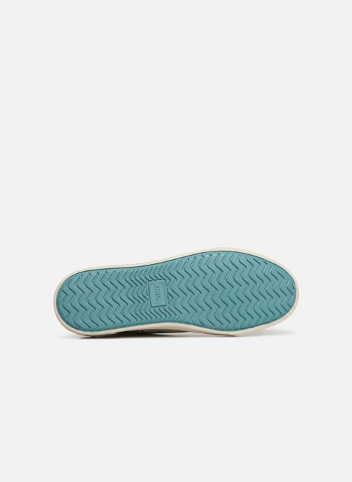 Baskets TOMS Trvl Lite Low Multicolore vue haut