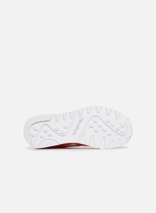 Sneaker Reebok Classic Nylon Color rot ansicht von oben