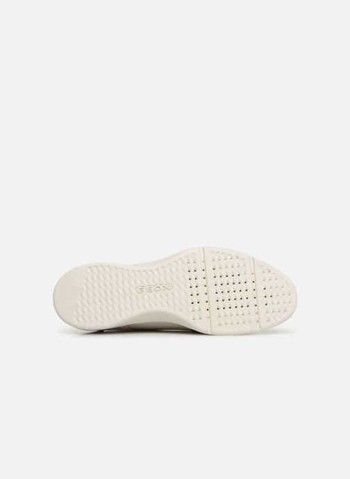 Zapatos con cordones Geox D ARJOLA F D92DHF Beige vista de arriba