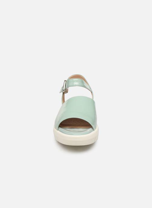 Sandales et nu-pieds Geox D WIMBLEY A D92DPA Vert vue portées chaussures