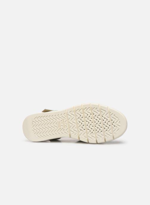 Sandales et nu-pieds Geox D WIMBLEY A D92DPA Vert vue haut