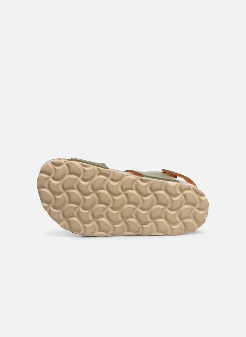 Sandales et nu-pieds I Love Shoes Borini Vert vue haut