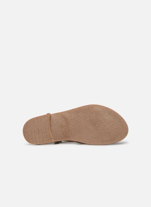 Sandales et nu-pieds Les Tropéziennes par M Belarbi Chouette Marron vue haut