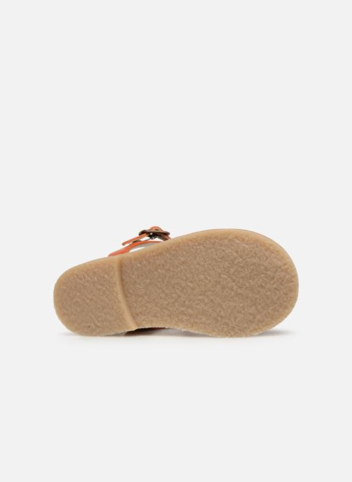 Sandalias Tinycottons Braided sandals Marrón vista de arriba
