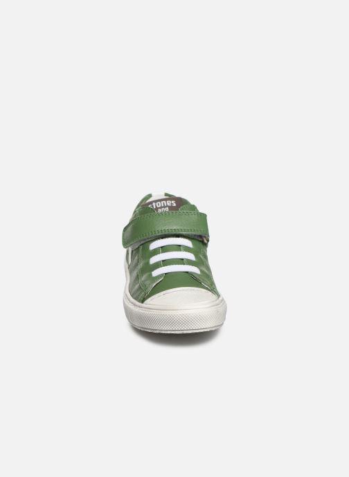 Baskets Stones and Bones Cisto Vert vue portées chaussures