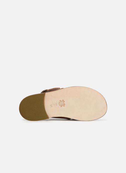 Sandales et nu-pieds PèPè Kava Marron vue haut