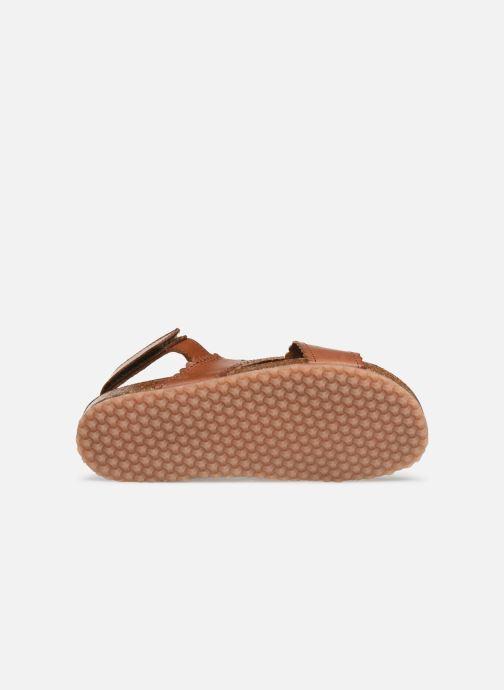 Sandales et nu-pieds PèPè Vacchetta Marron vue haut