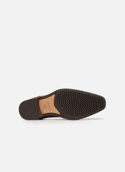 Chaussures à lacets Geox U NEW LIFE C U92P4C Marron vue haut