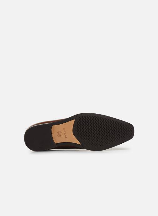 Chaussures à lacets Geox U NEW LIFE B U92P4B Marron vue haut