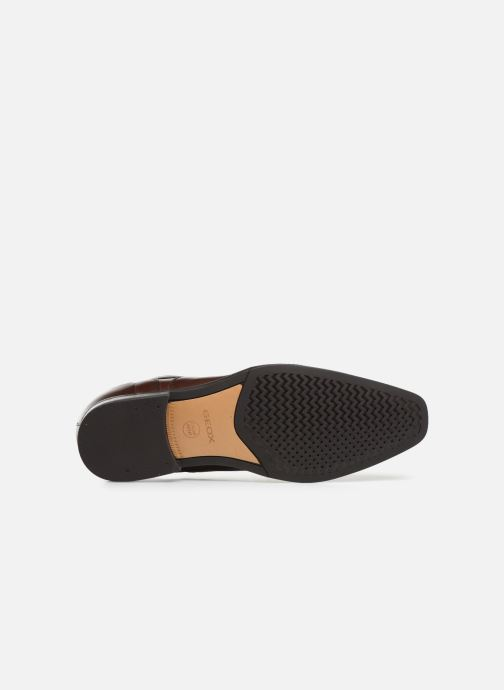 Zapatos con cordones Geox U NEW LIFE B U92P4B Marrón vista de arriba