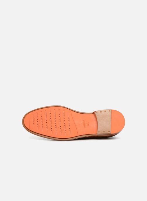 Zapatos con cordones Geox U BAYLE B U927CB Marrón vista de arriba