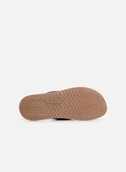 Sandales et nu-pieds Geox U ARTIE C U92V1F Bleu vue haut