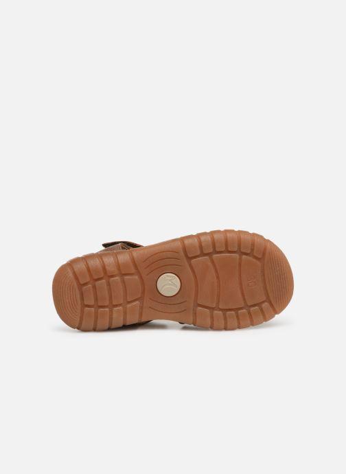 Sandales et nu-pieds Minibel Storm Marron vue haut