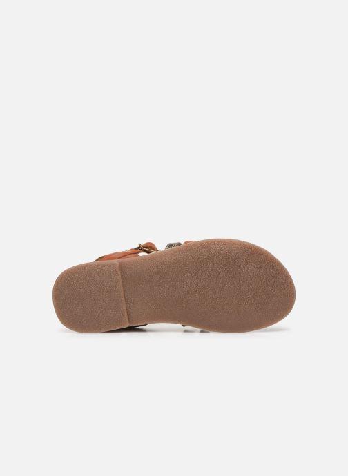 Sandales et nu-pieds Little Mary Barbade Marron vue haut