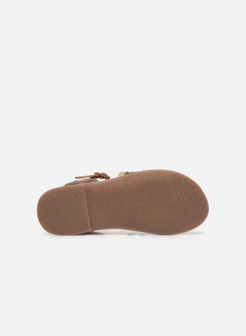 Sandales et nu-pieds Little Mary Barbade Rose vue haut