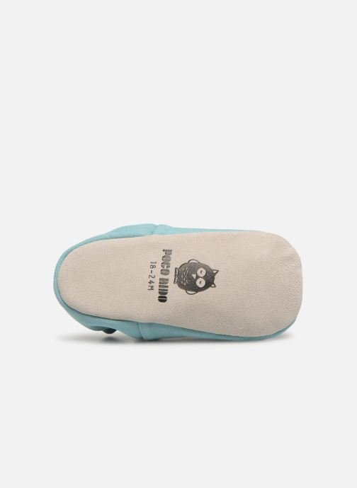 Chaussons Poco Nido Dragonfly Turquoise Bleu vue haut