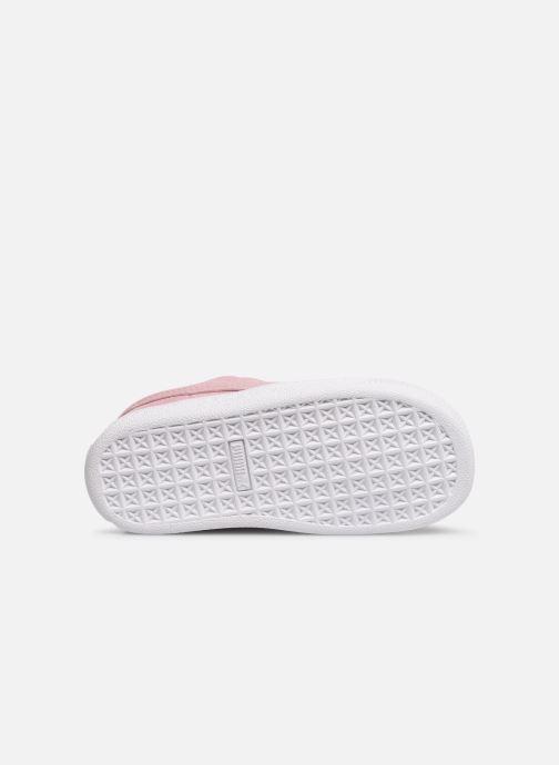 Sneaker Puma Suede Crush rosa ansicht von oben