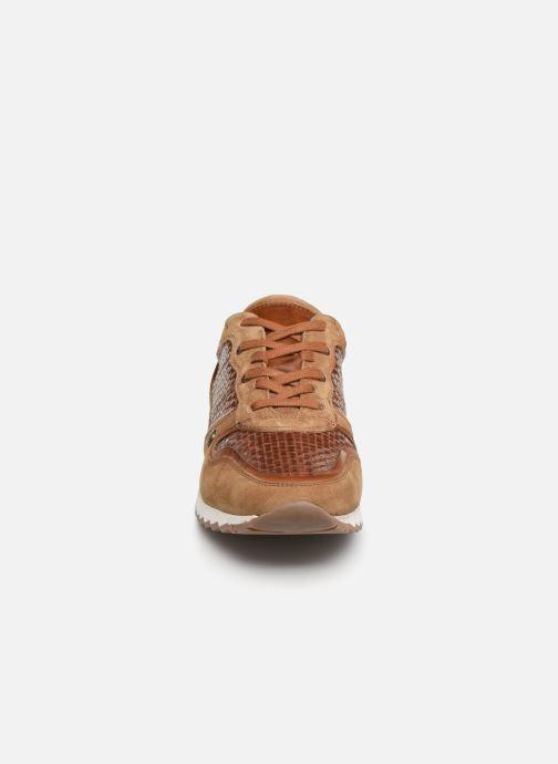 Baskets Les Tropéziennes par M Belarbi KAPRIO Marron vue portées chaussures