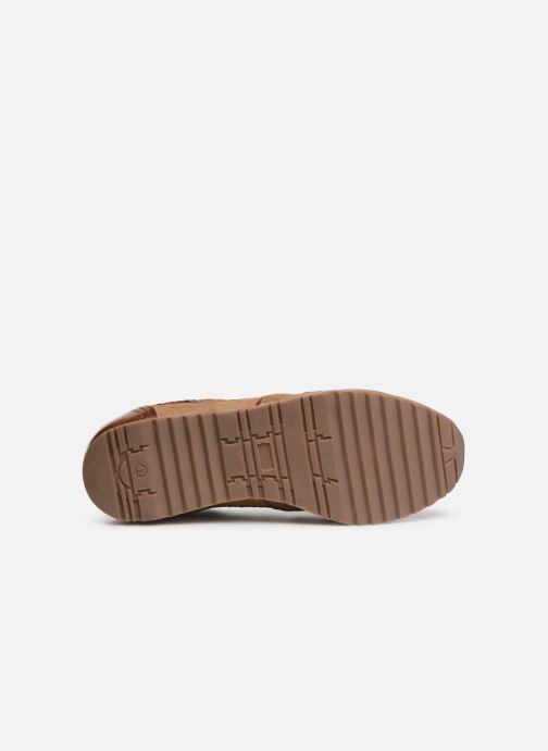 Sneakers Les Tropéziennes par M Belarbi KAPRIO Marrone immagine dall'alto