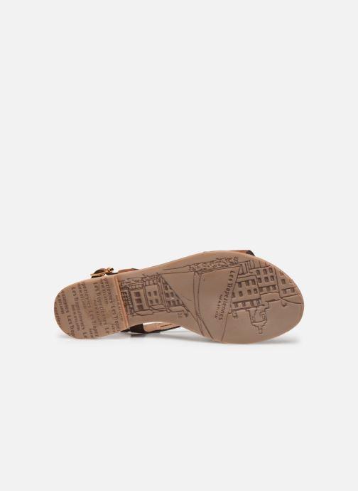 Sandals Les Tropéziennes par M Belarbi HANDY Brown view from above