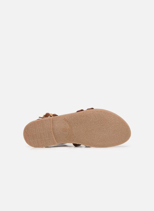 Sandales et nu-pieds Les Tropéziennes par M Belarbi HICELOT Marron vue haut