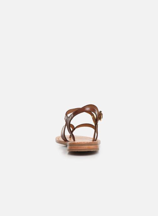 Sandales et nu-pieds Les Tropéziennes par M Belarbi HEDI Marron vue droite