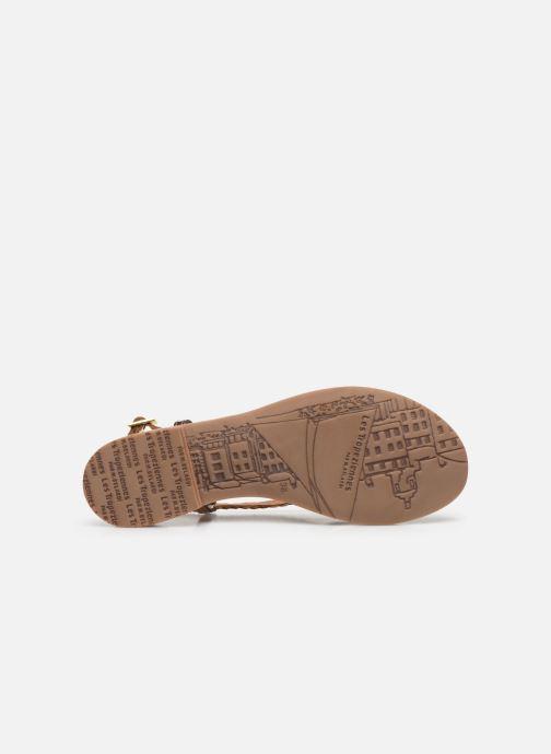 Sandalias Les Tropéziennes par M Belarbi MONATRES Oro y bronce vista de arriba