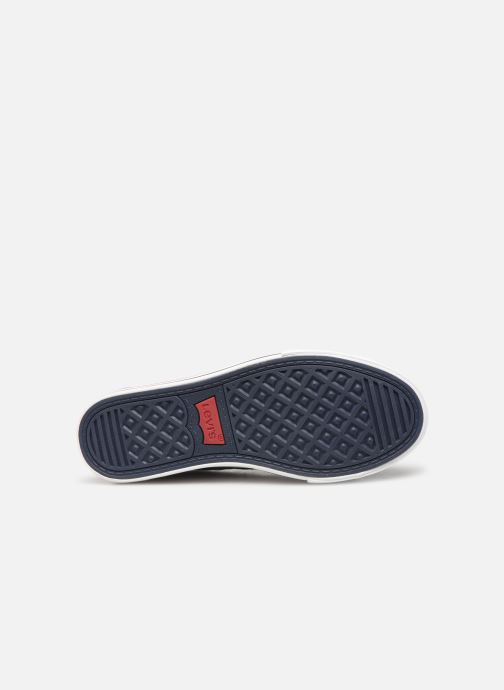 Trainers Levi's Trucker Low Blue view from above