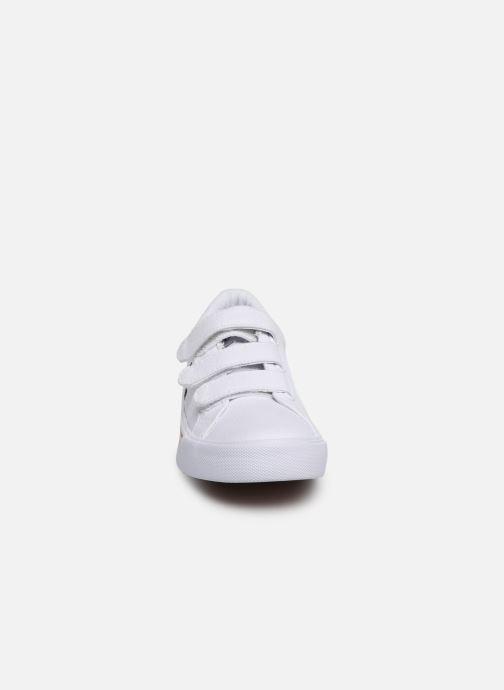 Baskets Polo Ralph Lauren Edgewood EZ Blanc vue portées chaussures