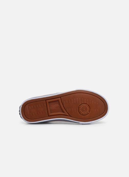 Sneakers Polo Ralph Lauren Edgewood EZ Wit boven