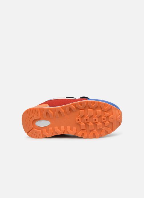Sneakers Billybandit MARTY Multicolore immagine dall'alto