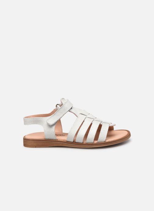 Sandales et nu-pieds Acebo's Alicia Gris vue derrière