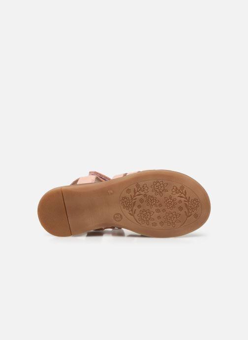 Sandales et nu-pieds Acebo's Alicia Rose vue haut