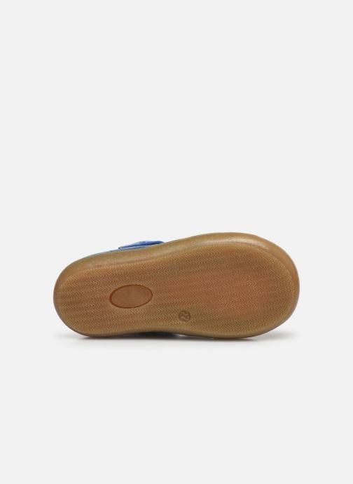 Sandali e scarpe aperte Acebo's Roman Azzurro immagine dall'alto