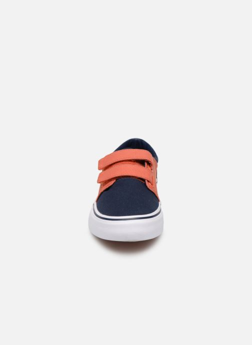 Sneakers DC Shoes Trase V Kids Azzurro modello indossato