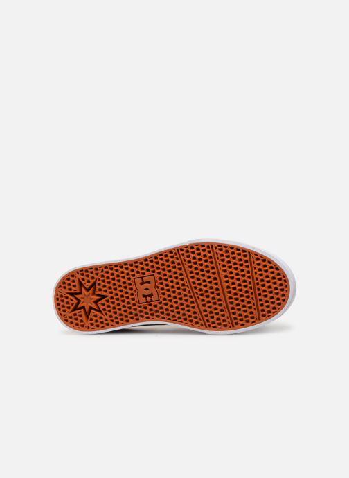 Sneakers DC Shoes Trase V Kids Azzurro immagine dall'alto