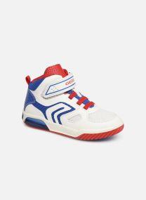Baskets Enfant J Inek Boy Mid J929CA