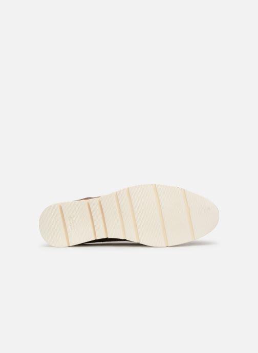 Scarpe con lacci Georgia Rose Nahema Marrone immagine dall'alto