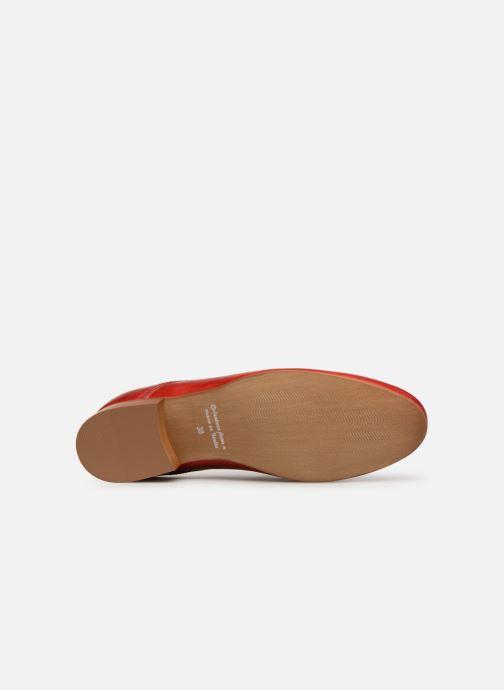 Zapatos con cordones Georgia Rose Nyoko Rojo vista de arriba