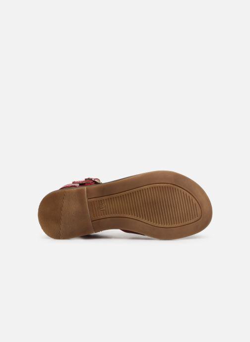 Sandales et nu-pieds Romagnoli Amanda Rose vue haut