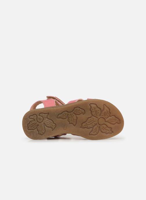 Sandales et nu-pieds Kavat Mala EP Rose vue haut