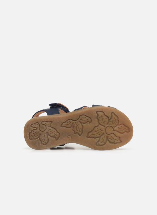Sandales et nu-pieds Kavat Mala EP Bleu vue haut